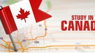 Cách đánh giá hệ thống trường cao đẳng công lập của Canada